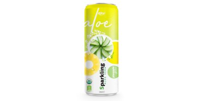 private label brand Sparkling aloe vera pinapple 320ml from RITA US
