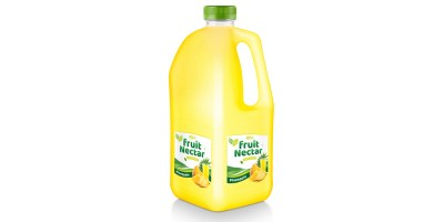Fruit Nectar 2L with passion fruit flavor from RITA US