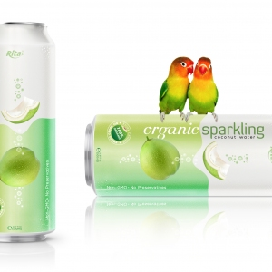 Organic Sparkling Coconut water 500ml